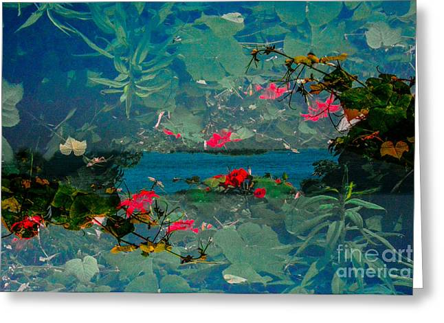 Abstractions Greeting Cards - Fairy Land Flowers Montauk Greeting Card by Thomas Carroll