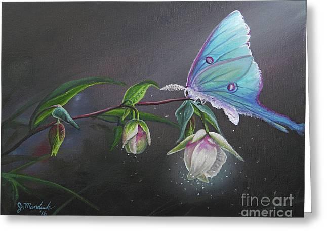 Fairy Lantern's Glow Greeting Card by Joe Mandrick