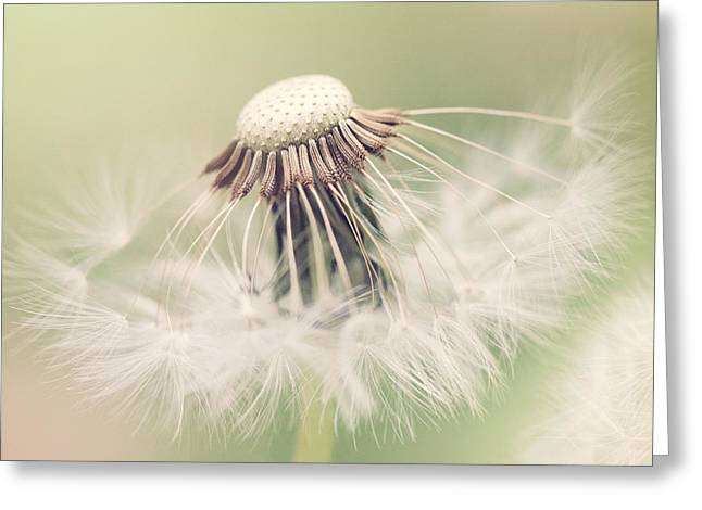 Subtle Colors Greeting Cards - Fairy Parasol Greeting Card by Kharisma Sommers