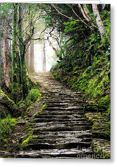 Fairytale Stairs Greeting Card by Amy Sorvillo