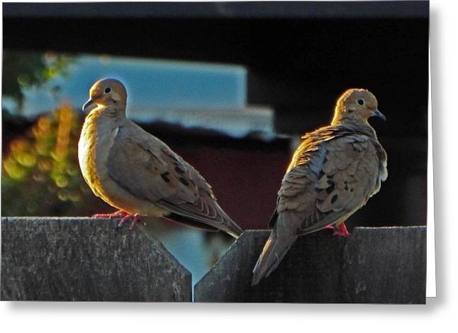 Pairs Greeting Cards - Faithful Companions Greeting Card by Kathy Franklin