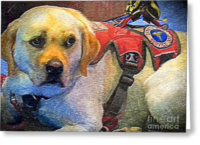 Working Dog Greeting Cards - Faithful Service Dog Greeting Card by Shelly Weingart
