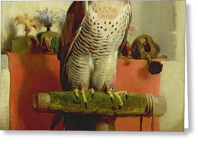 Falcon Greeting Card by Sir Edwin Landseer