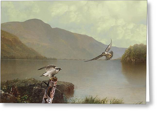 Falcons At Flagstaff Lake Greeting Card by IM Spadecaller