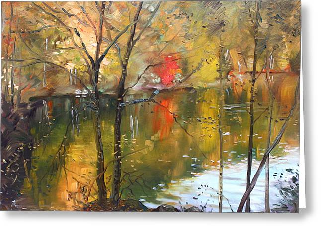 Autumn Colors Greeting Cards - Fall 2009 Greeting Card by Ylli Haruni