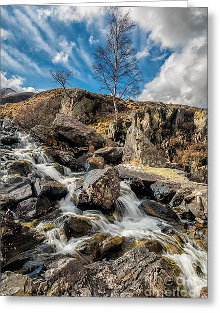 Stream Digital Greeting Cards - Fall And Winter Greeting Card by Adrian Evans