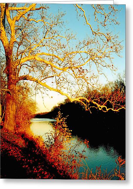 Eastern United States Greeting Cards - Fall at the Raritan River in New Jersey Greeting Card by Christine Till