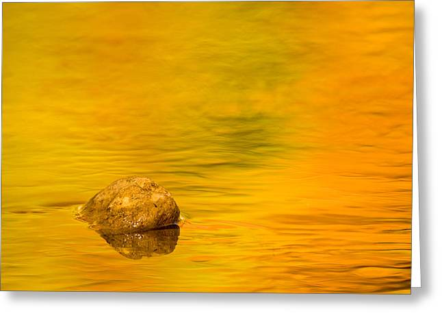 Fall Photos Greeting Cards - Fall Color Abstract Greeting Card by Adam Romanowicz