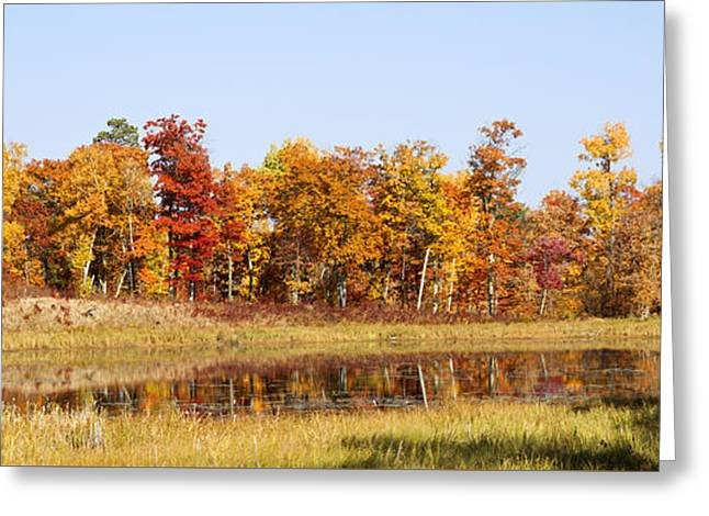 Artist Photographs Greeting Cards - Fall Color Reflecting Greeting Card by Donald  Erickson