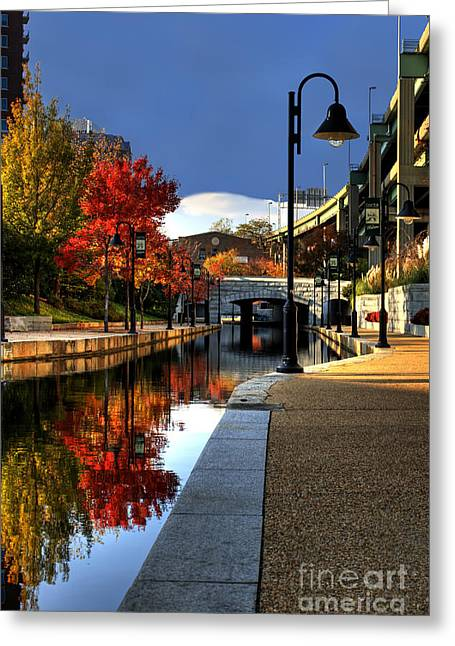 Fall Trees Greeting Cards - Fall Colors Along the Canal Greeting Card by Tim Wilson