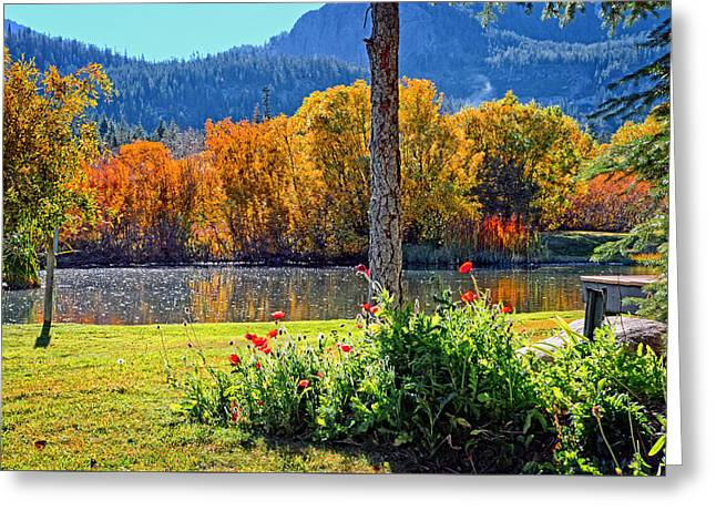 Reflection In Water Greeting Cards - Fall Colors and Poppies at the Pond Greeting Card by Lynn Bauer