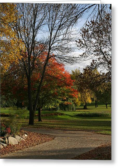 Okoboji Greeting Cards - Fall Colors at Brooks Greeting Card by Gary Gunderson