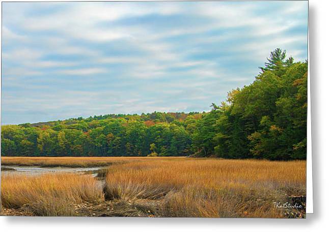 Fall Colors In Edgecomb Greeting Card by Tim Kathka