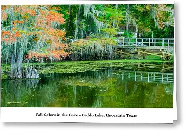 Caddo Lake Greeting Cards - Fall Colors in the Cove Greeting Card by Geoff Mckay