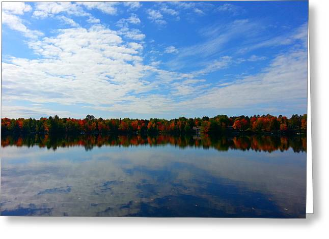 Fall Trees Greeting Cards - Fall Colors on Keyes Lake Greeting Card by Brook Burling