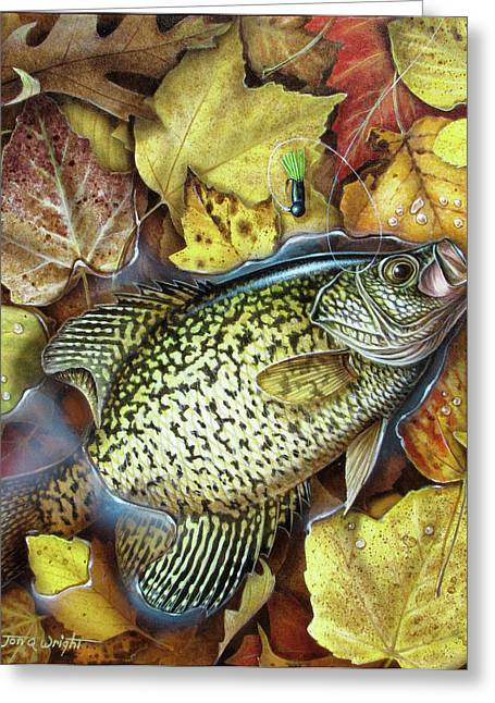 Crappies Greeting Cards - Fall Crappie Greeting Card by JQ Licensing