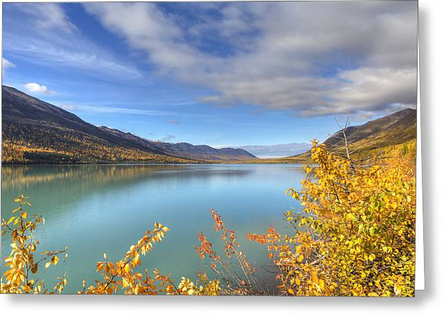 Fall Foliage Along Eklutna Lake Greeting Card by Lucas Payne