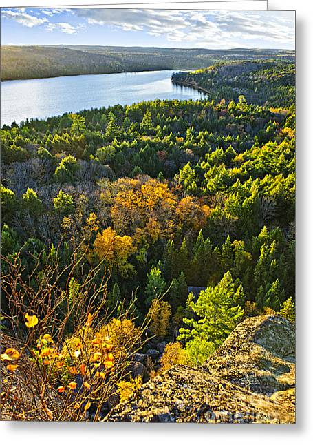 Algonquin Park Greeting Cards - Fall forest and lake top view Greeting Card by Elena Elisseeva