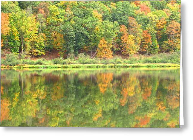 Fall Forest Reflection Greeting Card by Joshua Bales