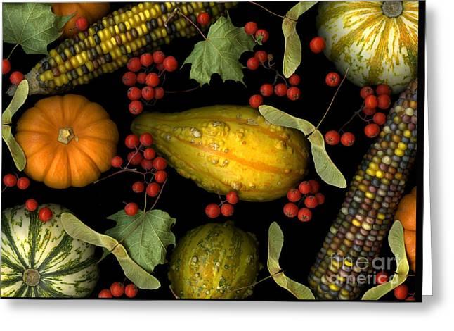 Fall Harvest Greeting Card by Christian Slanec