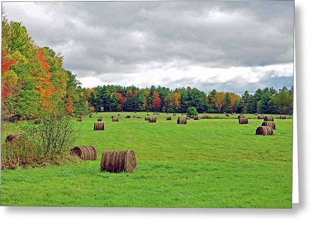 Maine Agriculture Greeting Cards - Fall Hay Bales Greeting Card by Glenn Gordon