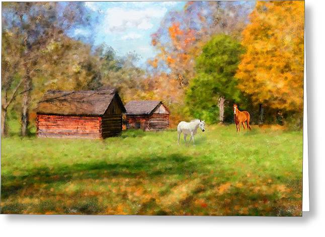 Tennessee Barn Greeting Cards - Fall Horses Greeting Card by Mary Timman