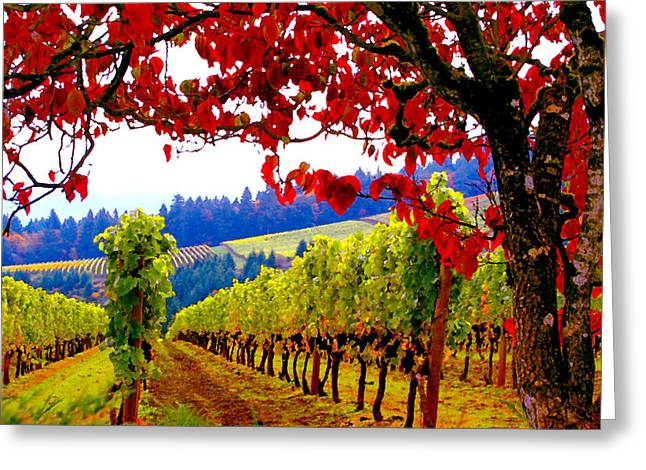 Wine Tasting Greeting Cards - Fall in Dundee Greeting Card by Margaret Hood