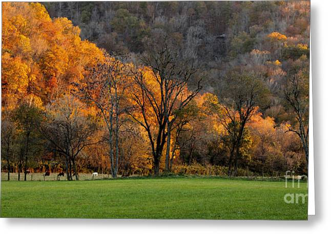 Boxley Valley Greeting Cards - Fall in the Boxley Valley Greeting Card by Matt Blaisdell
