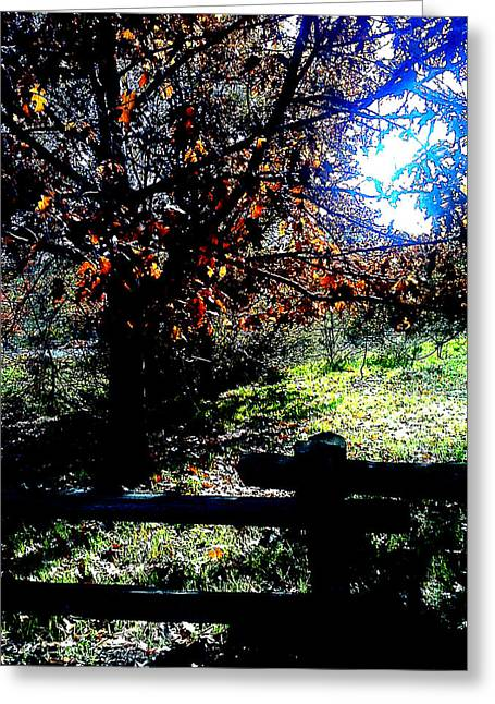 Fall Grass Mixed Media Greeting Cards - Fall in the Park Greeting Card by Dana Pedersen