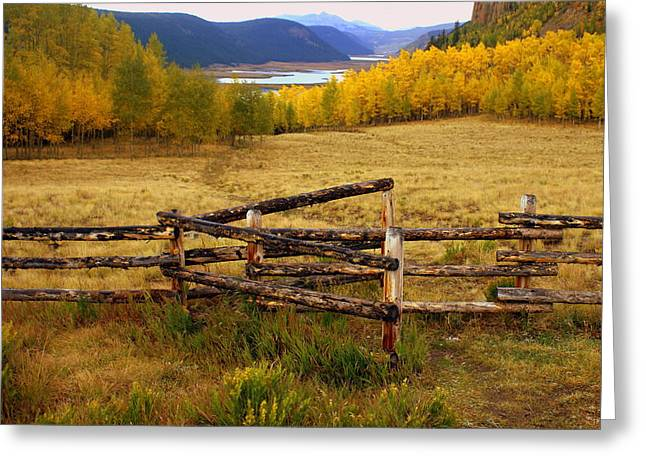 Fall In The Rockies 2 Greeting Card by Marty Koch