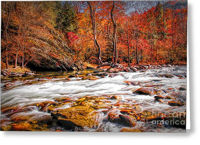 Fall In The Smokies Greeting Card by Lynn Sprowl