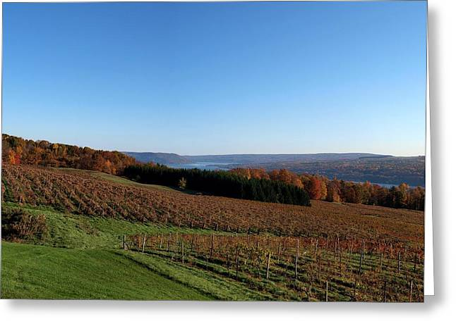 Fall in the Vineyards Greeting Card by Joshua House