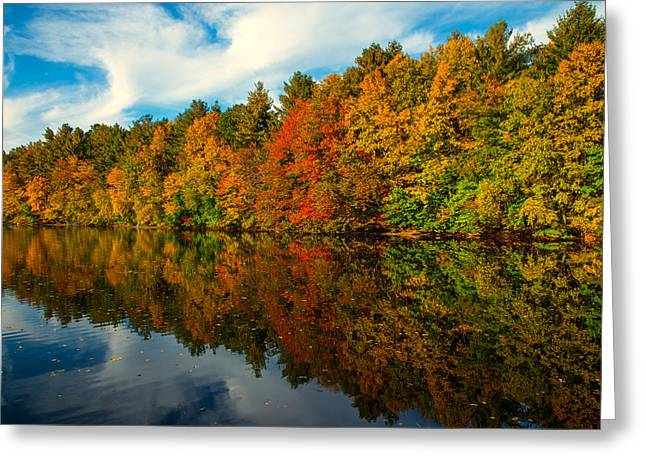 Fall Into Colors Greeting Card by Karol Livote