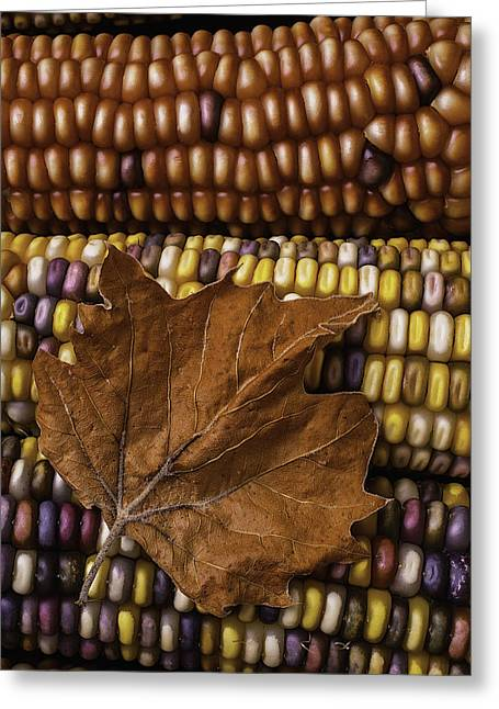 Brown Leaf Greeting Cards - Fall Leaf And Indian Corn Greeting Card by Garry Gay