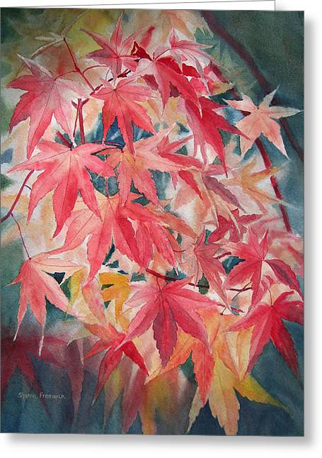 Red Leaf Greeting Cards - Fall Maple Leaves Greeting Card by Sharon Freeman