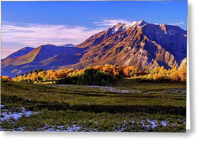 American West Greeting Cards - Fall Meadow Greeting Card by Chad Dutson