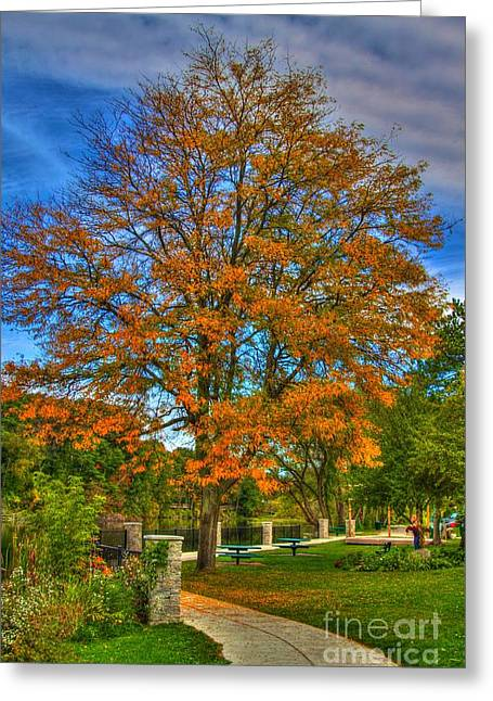 Scenic Artwork Greeting Cards - Fall on the walk Greeting Card by Robert Pearson
