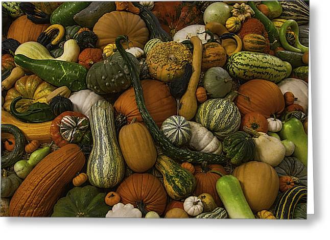 Melon Greeting Cards - Fall Pile Greeting Card by Garry Gay