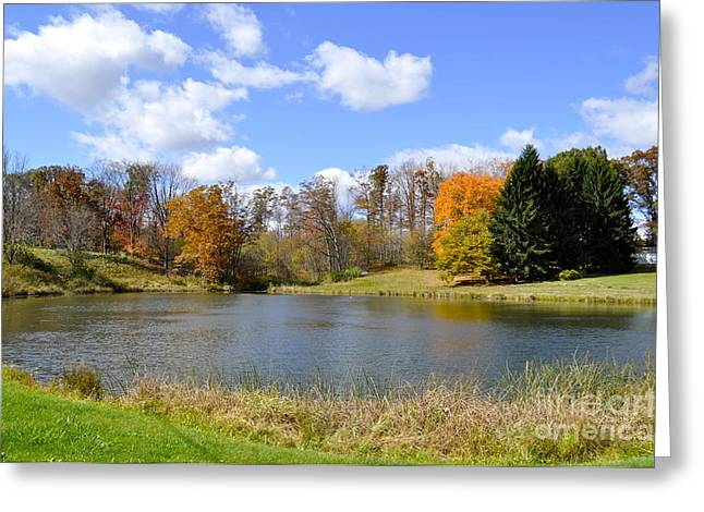 Fall Pond Greeting Card by Penny Neimiller