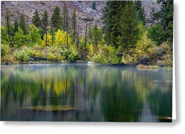 Rocks Greeting Cards - Fall Reflected Greeting Card by Cat Connor