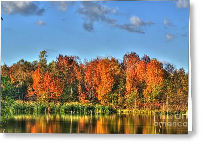 Colorado Artwork Greeting Cards - Fall Reflection-2 Greeting Card by Robert Pearson