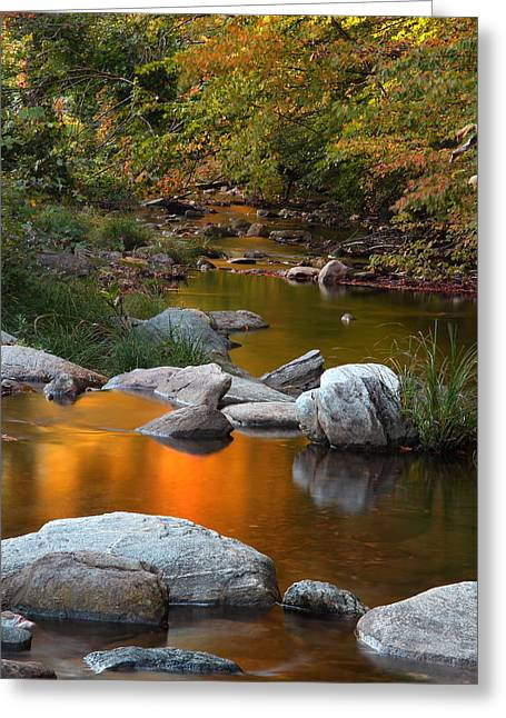 Kent Falls State Park Greeting Cards - Fall Reflection Greeting Card by Andrea Galiffi