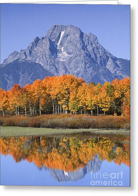 Change Of Seasons Greeting Cards - Fall Reflection at Oxbow Bend Greeting Card by Sandra Bronstein