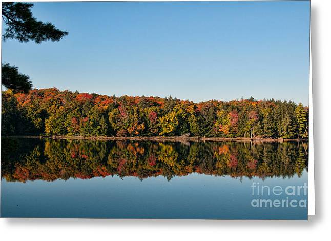 Fall Reflection Greeting Card by Sian Cox