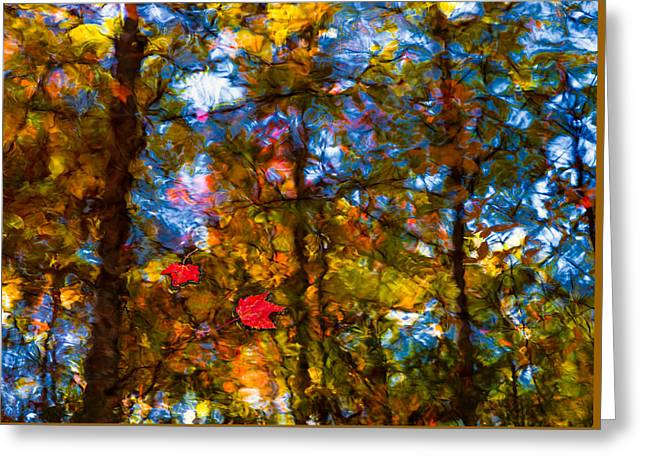 Oranger Greeting Cards - Fall Reflection Greeting Card by Steven Maxx