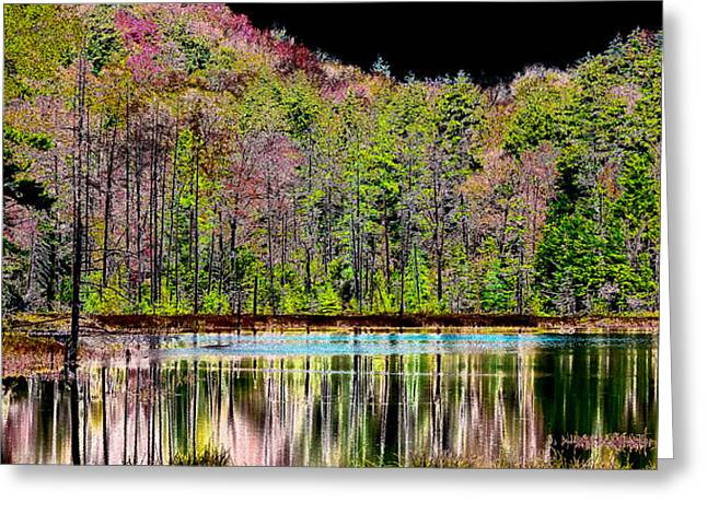 Nature Abstract Greeting Cards - Fall Reflections Greeting Card by David Patterson