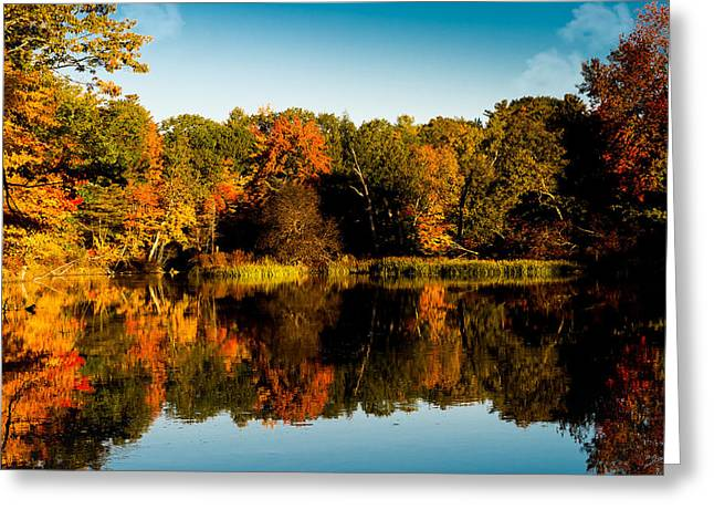 Fall Reflections Greeting Card by Donna Lee