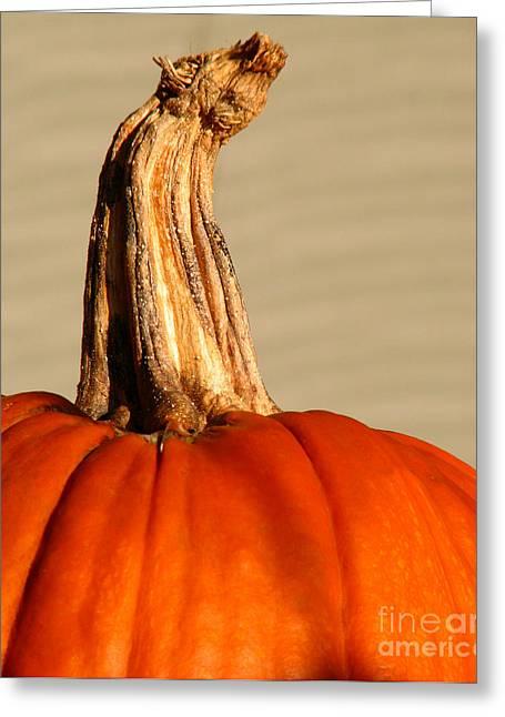 Pumpkins Greeting Cards - Fall rising Greeting Card by Amanda Barcon