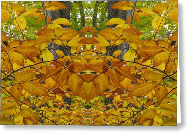 Fall Rorschach Greeting Card by Cara Imperato