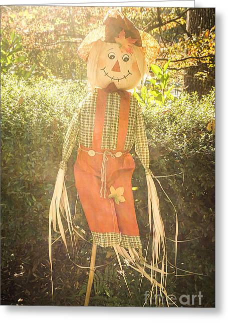 Fall Scarecrow Greeting Card by Megan Reshni